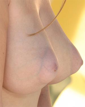 Aspen Stevens Big Perky Tits