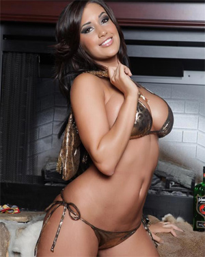 Claudia Sempedro Fireplace
