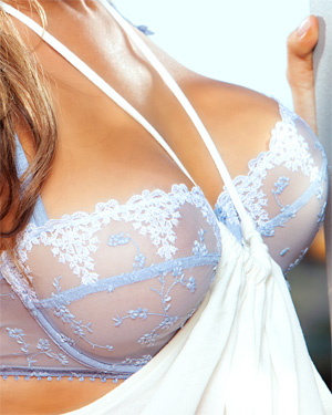 Kerry Lynn Blue Lingerie Playboy