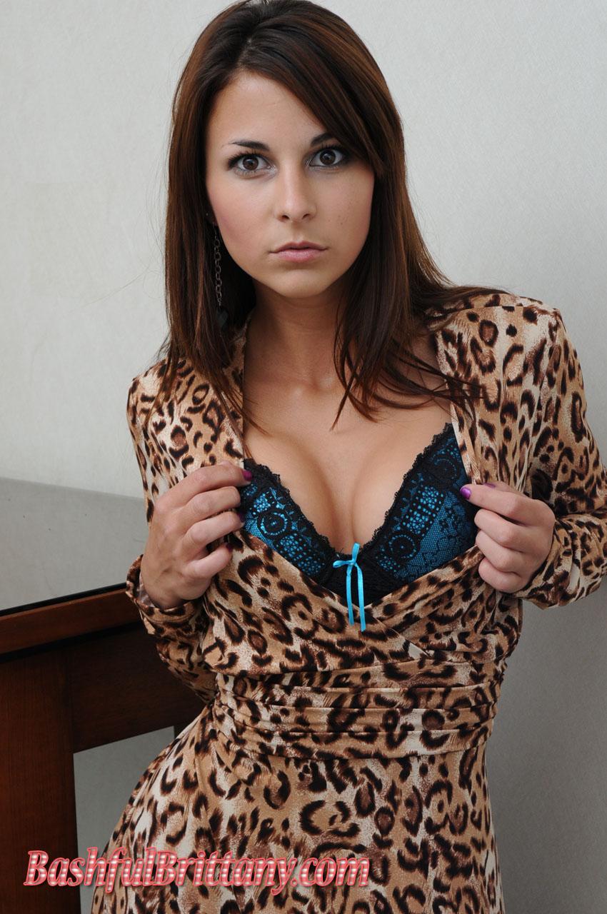 brittany bikini Bashful leopard