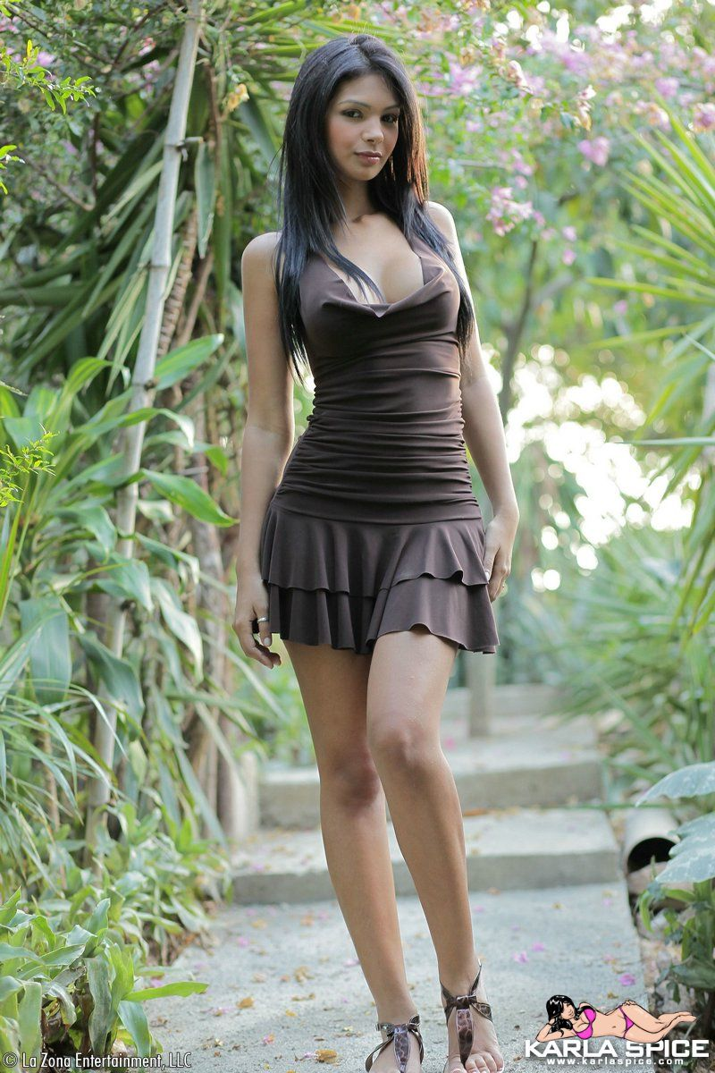Karla Spice Brown Dress: http://www.hottystop.com/karla-spice-brown-dress/